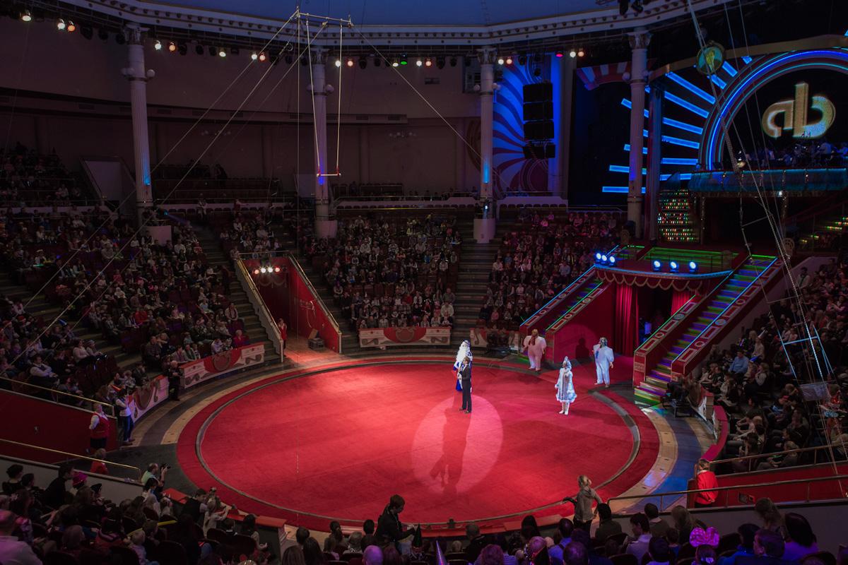 вот фото зала цирка на цветном бульваре предпочтительный цвету материал